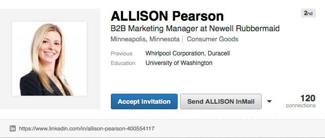 Another Fake LinkedIn Profile