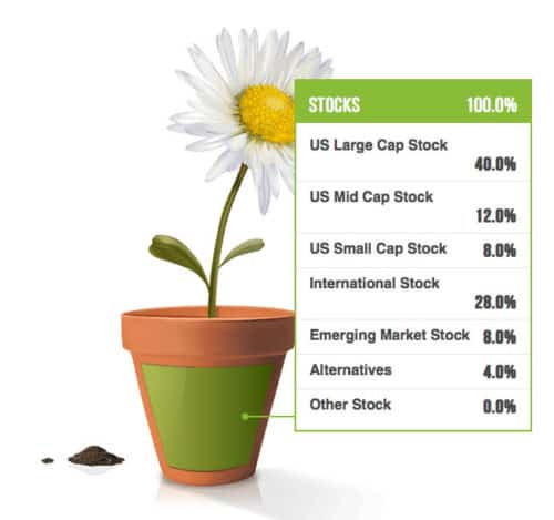blooom Suggested Investment Structure